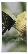 Butterfly On Thistle Beach Towel