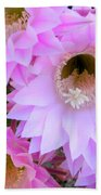 Cactus Flowers Beach Towel