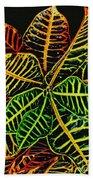 Cadiaeum Crotons Tropical Houseplant Shrub Beach Towel