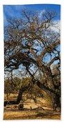 California White Oak Beach Towel