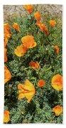 Californian Poppy Eschscholzia Beach Towel