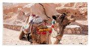Sitting Camel Beach Towel