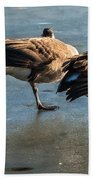 Canada Geese At Rest Beach Towel