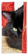 Cat Hiding Behind Drapes Beach Towel