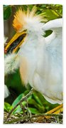 Cattle Egret With Young In Nest Beach Towel