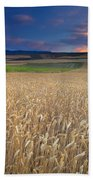 Cereal Fields At Sunset Beach Towel