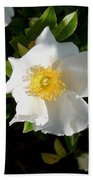 Cherokee Rose Beach Towel