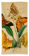 Chinese Butterflies 1847 Beach Towel