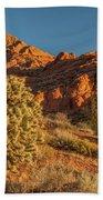 Cholla Cactus And Red Rocks At Sunrise Beach Towel