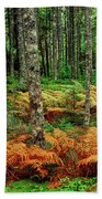 Cinnamon Ferns And Red Spruce Trees Beach Towel