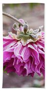 Close-up Of Flowers Covered By Frost Beach Towel