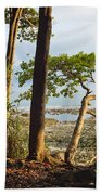 Coastal Rainforest Havelock Isl India Beach Towel