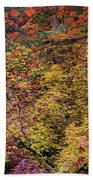 Colorful Leaves On A Tree Beach Sheet