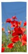 Common Poppy Flowers Beach Towel