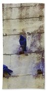 Couple Of Pigeons On A Wall Beach Towel