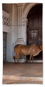 Cow At Church At Colva Beach Towel