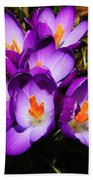 Crocus Flower Beach Towel