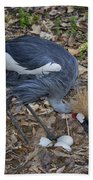 Crowned Crane And Eggs Beach Towel