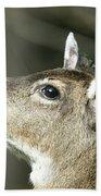 Deer Sunshine Profile Beach Towel