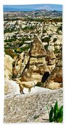 Dog Looking At Fairy Chimneys In Cappadocia-turkey Beach Towel