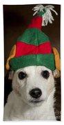 Dog Wearing Elf Ears, Christmas Portrait Beach Sheet