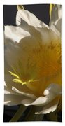 Dragon Fruit Blossom In Profile Beach Towel