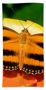 Dryadula Butterfly Beach Towel