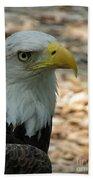 Eagle 1 Beach Towel