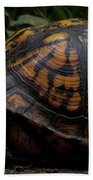 Eastern Box Turtle Beach Towel