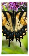 Eastern Tiger Swallowtail Butterfly Beach Towel