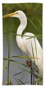 Egret In The Cattails Beach Towel