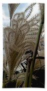 Etched Beach Towel
