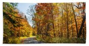 Fall Forest Road Beach Towel