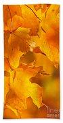 Fall Maple Leaves Beach Towel by Elena Elisseeva