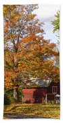 Fall View Beach Towel