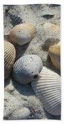 Fernandina Shells  Beach Towel