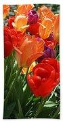 Festival Of Tulips Beach Towel