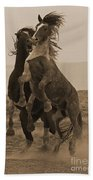 Fighting Wild Stallions Beach Towel