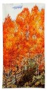 Flaming Aspens 2 Beach Towel