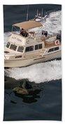 Fleming Yacht's Corvette Beach Towel