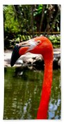 Florida Pink Flamingo Beach Towel