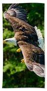 Flying Eagle Beach Towel