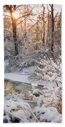 Forest Creek After Winter Storm Beach Towel