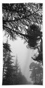 Forest Dreams Beach Towel