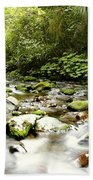 Forest Stream Beach Towel by Les Cunliffe