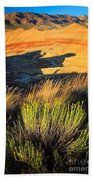 Fossil Beds And Grass Beach Towel