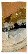 Fossil Clam With Calcite Crystals Beach Towel