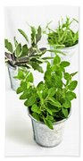 Fresh Herbs In Pots Beach Towel