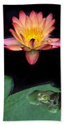 Frog And Waterlily Beach Towel