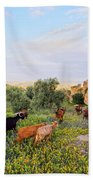 Goats In Fes In Morocco Beach Towel